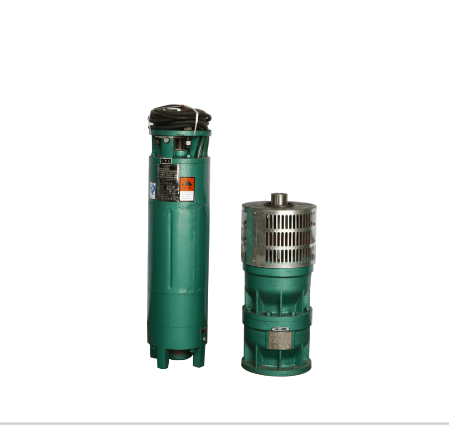 QJ Vertical Water Motor Pump