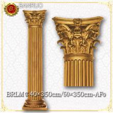 Building Design Pillar (BRLM50*350-AF0) for Sale