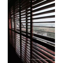 114mm Lover Shutters Massivholz (SGD-S-6916)