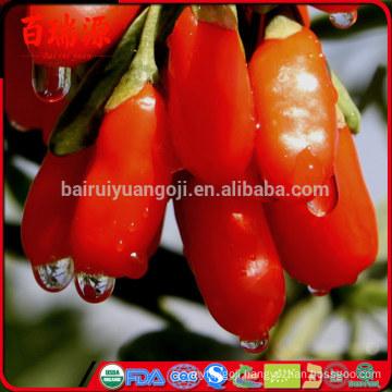 Original Ningxia dried goji berry goji berries barbary goji fruit leisure snacks