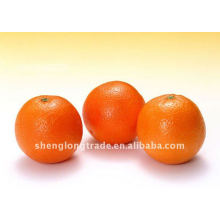 Süße Navel frische Orangenfrüchte