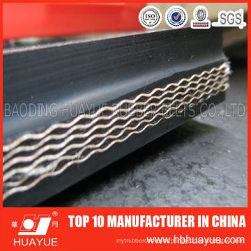 High Quality Nn/Nylon Core Conveyor Belt with International Standard