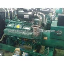 500kw / 625kva Generador diesel de la energía de Wandi fijado (WD269TAD56)