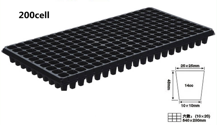 Seed Tray200 Cell