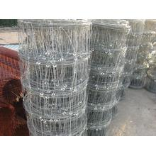 Good Quality Field Fence Cattle Fence