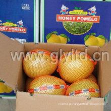 Fresh Honey Pomelo novo 2