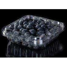 Cestita de plástico PET para frutas y arándanos