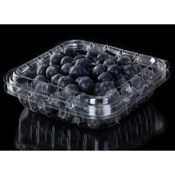 Punk concha de frutas de plástico PET para mirtilos