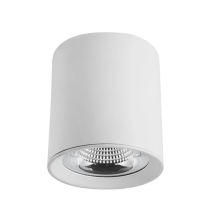 LED cylindrical ceiling light indoor