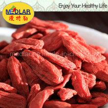 Mispel Chinesische Wolfberry Bio Goji Beere