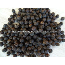 BLACK PEPPER FROM SOUTH INDIA