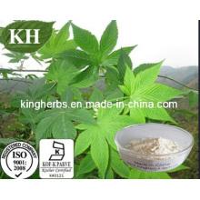 Edulcorante natural Extracto de té dulce Rubusósidos 75% Min por HPLC