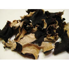 Black Wood Ear Extract Polysaccharides 20% by UV Anti-Aging