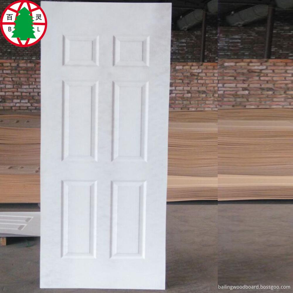 Door Skin 5