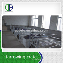 Pig Equipment Hot Galvanize Factory Supply Farrowing To Fattening Pig