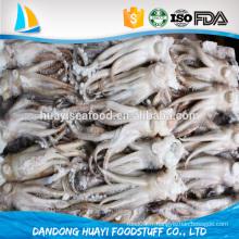 Tête de calmar frais et fraîchement arrivé avec des fruits de mer sains