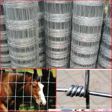 Grassland Fence & Animal Fence Net & Cattle Fence
