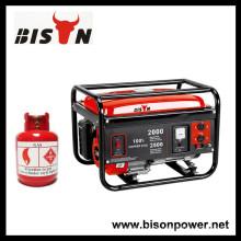 BISON (CHINA) Neuer Technologie Vergaser Zuverlässiger Methangas Generator