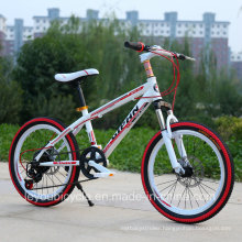 Hot Sale High Quality Mountain Bike/Bicycle MTB