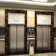 Зеркальный травильный пассажирский лифт для строительства и дома