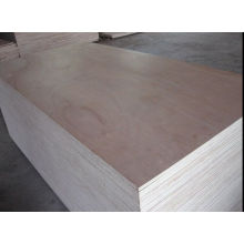 China Manufacturer Commercial Plywod at Wholesale Price
