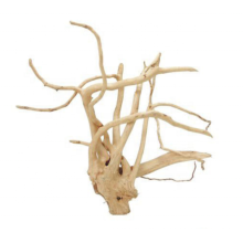 Top sales High Quality Slim Wood Natural Aquarium Driftwood