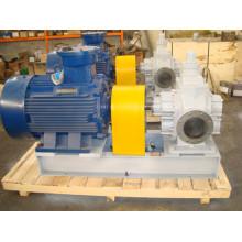 Ycb30 Schmieröl Getriebeölpumpe für Maschine