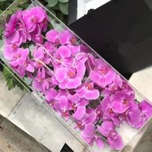 Fabricant professionnel Rectangulaire acrylique Rose Box Luxury à vendre