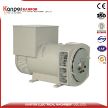 Stf224 Permanent Magnet Alternator Price in China
