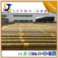 Fabricante de China blanco fresco llevó el accesorio de iluminación