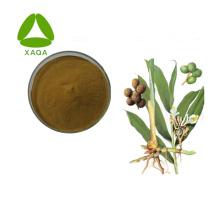 10:1 Amomum Villosum-Extrakt-Pulver