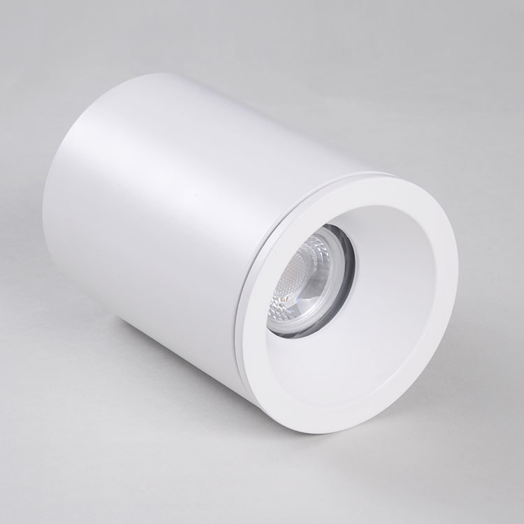 IP65 ceiling waterproof light Fixed Surface mounted downlight