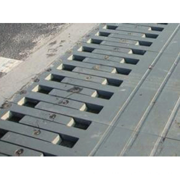 Hot Sale Steel Expansion Joint for Bridge (made in China)