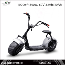 2016 Popular Ce 1000W 60V 12ah Front Suspension Fat Wheel Electric Scooter Double Seat