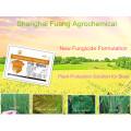 2016 Новый агрохимический фунгицид Бисмертиазол 20% + Тиазол Цинк 35%