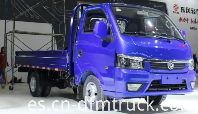 Dongfeng light truck (4)