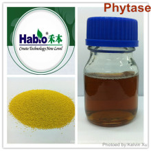 Thermostability Phytase for high humidity, powder and granule