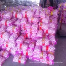 2016 Crop frais normal blanc ail chaud vente en Chine