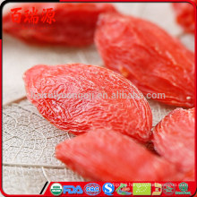 High quality goji berries orac value goji berries on sale goji berries overdose