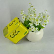 Cajas de hojalata de hojalata Caja de hojalata con cajas de hendidura