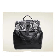 Genius Leather Backpack, (ZJ104)