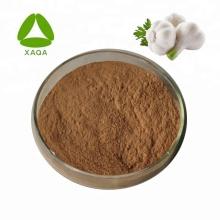 Black Garlic Extract Powder 10:1