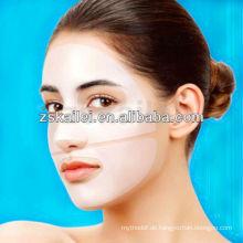 GMPC Fabrik OEM und ODM Natur Republik Schnecke Maske Korea comestic