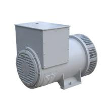 Mg 315 Series Electric Alternator Generator