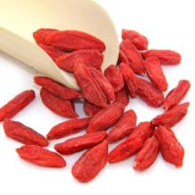 Factory Supply Fruit Nutrition sexuelle Stärke Goji Beeren