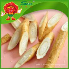 Venta al por mayor de alta calidad fresca china proveedor de bardana