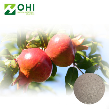 Pomegranate Peel Extract Punicalagin Pulver