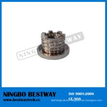 Hot Sale Brass Insert Nut Fast Supplier (BW-842)