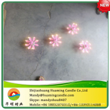 Chrysanthemum velas de cumpleaños