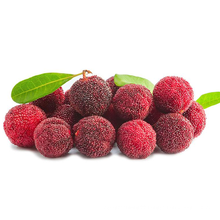 2021 Wholesale Good Quality Chinese Yang Mei Red Waxberry Sweet Red Bayberry